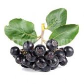 Арония (рябина черноплодная) плоды
